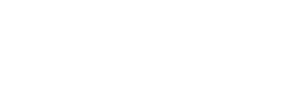 Maverick Defence logo